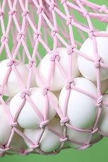 Bag of Eggs