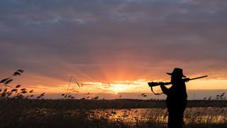 SL35 Duck Hunter