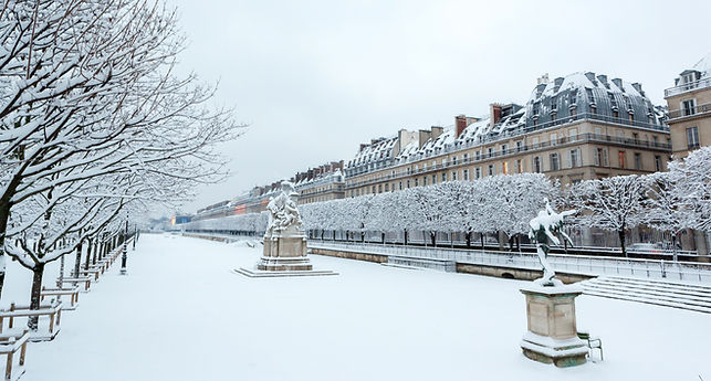 Tuileries Garden in the Winter