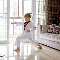Practicing Martial Arts at Home