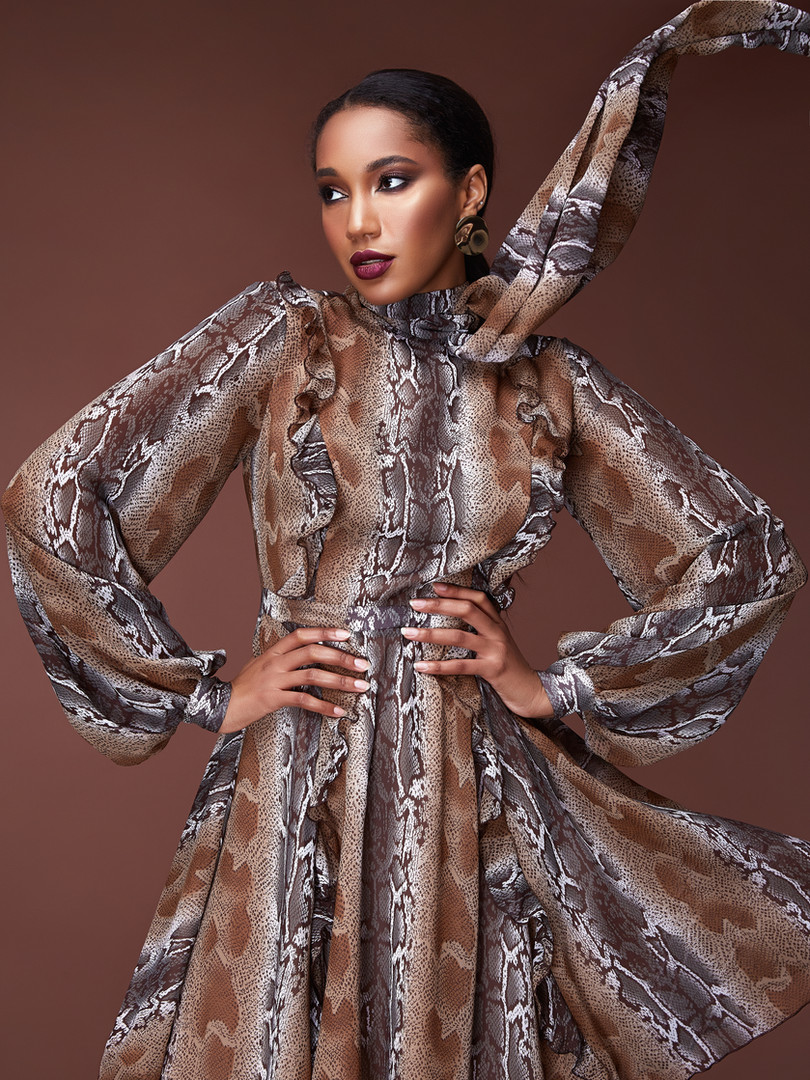 Stylist Dress animal print