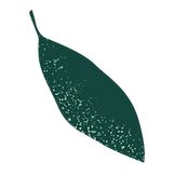 Feuille vert foncé