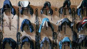 Let's talk Saddles!