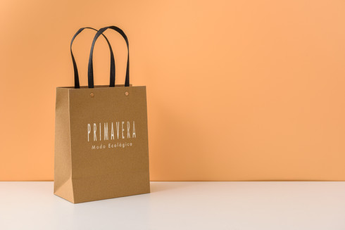 Promote Your Brand With CustomPaper Bag