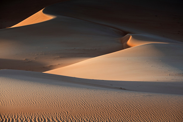 Beautiful Desert