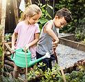 Barnträdgårdsskötsel