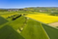 מגרש למכירה בעמק יזרעאל ,ליד מעבר גלבוע מגרש של 100 דונם למכירה לכל מטרה ,לאחסנה או לוגיסטיקה בעמק חפר
