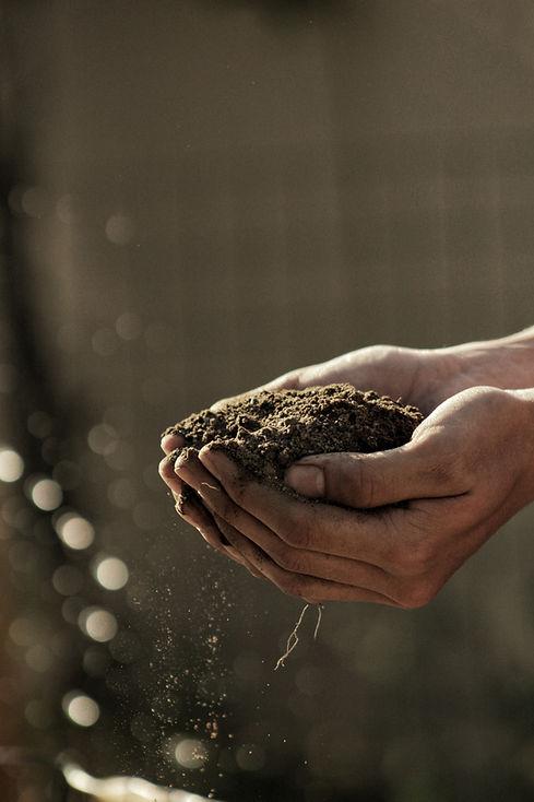 Holding Soil