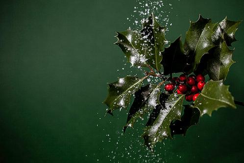 Christmas Treats to Share (Serves 4+)