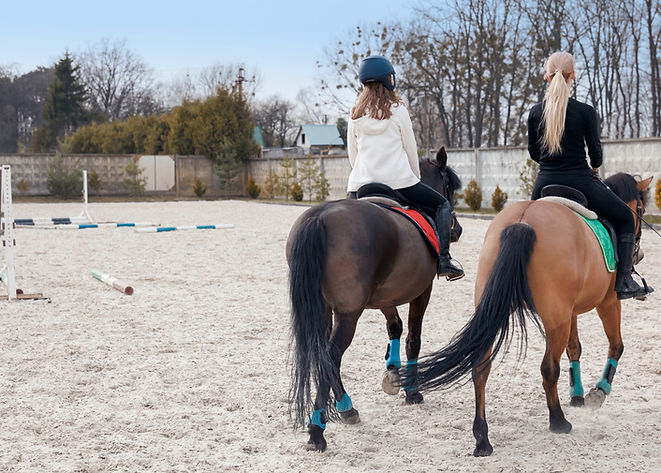 Equitación en Arena