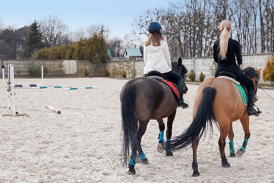 Horse Riding in Arena