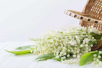 Bouquet de muguet