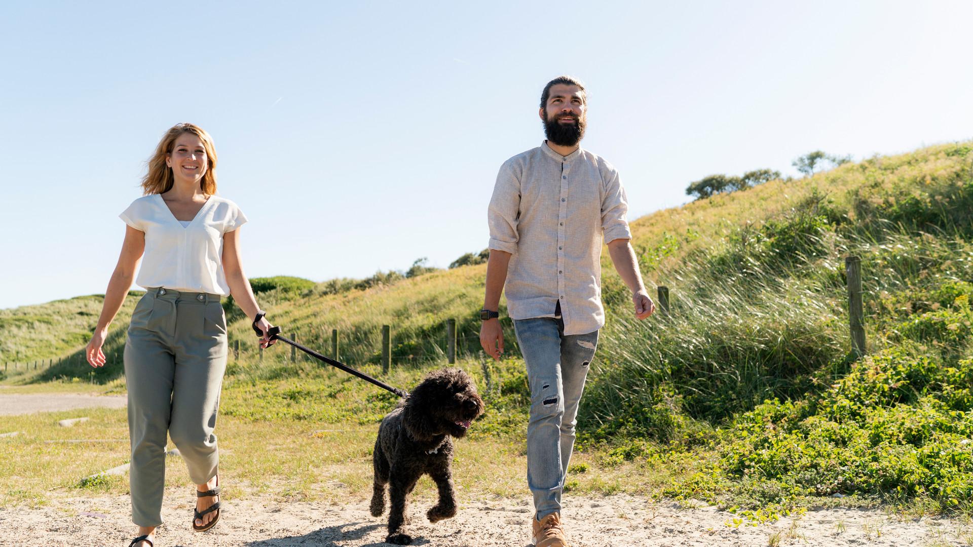 Promener le chien