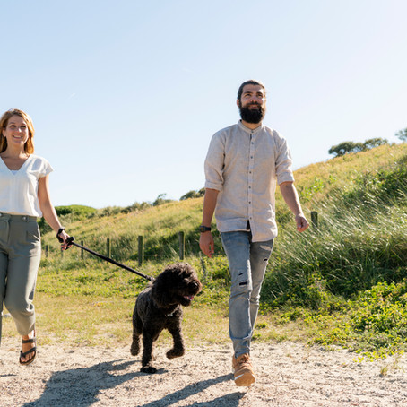 6 Surprising Benefits of a Daily Walk