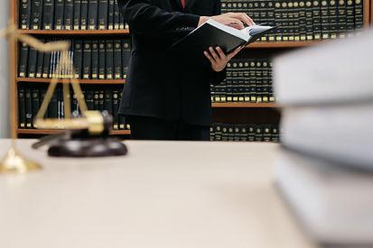 법률 검토