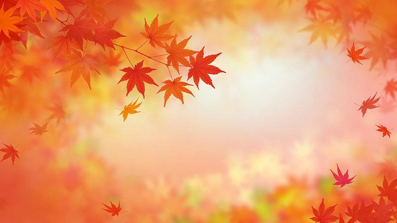 背景-和-和風-和柄-和紙-紅葉-秋