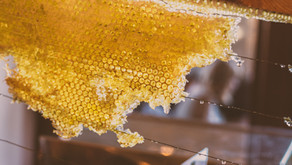New in the Basket: Honeycombs from Tabora Beekeepers