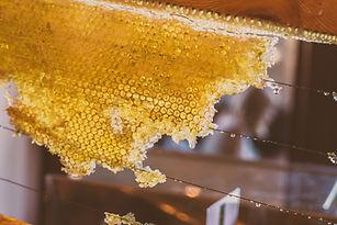 Morceau de nid d'abeille