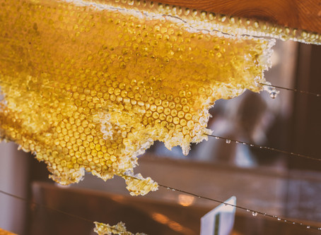 Simple uses for your fresh Honey