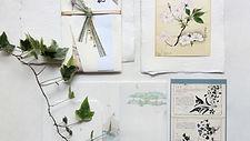 植物のウォールアート