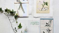 Plant Wall Art