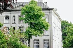 Stellen Baumbestände eine Gefahr für das Gebäude oder Menschen dar?