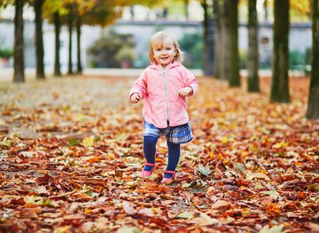 Le qi gong des saisons, l'automne