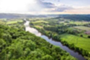 Rivière entourée d'arbres