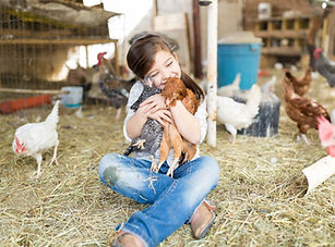 Rural Lifestyle Insurance