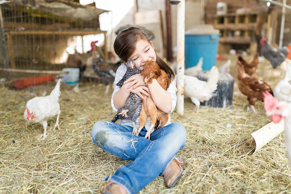 Farm, Farm with Little Girl, Virtual Farm Visits, Virtual Zoo Visits, Virtual Ideas, Chickens, Girl Hugging Chickens
