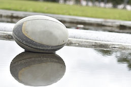 Rugby Ball Reflection