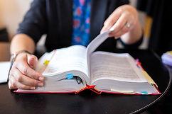 Legal Studies/Pre-Law
