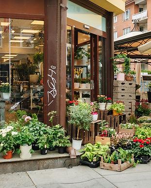 Plant Store