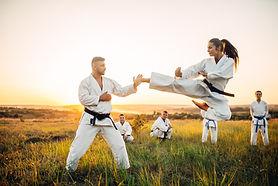 Karate-Praxis im Feld