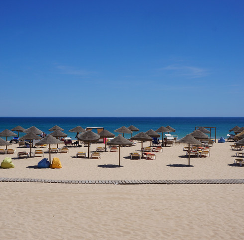 Sunny Beach Day