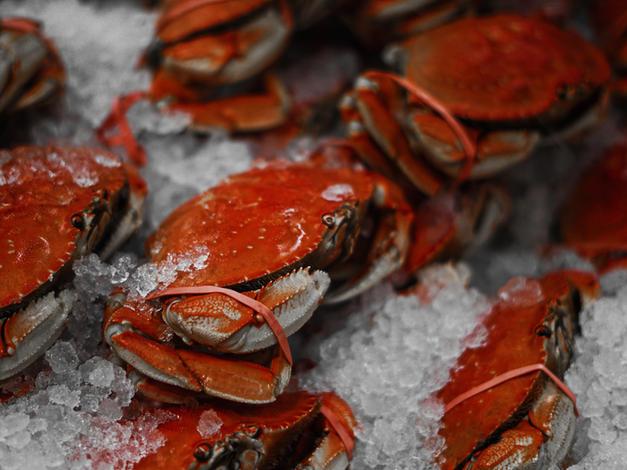 Casey's Crabs