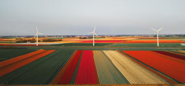 Serra do Mel Wind Project - Brazil