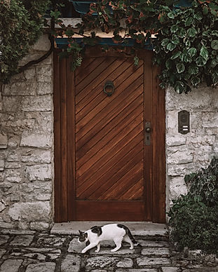 dřevěné dveře