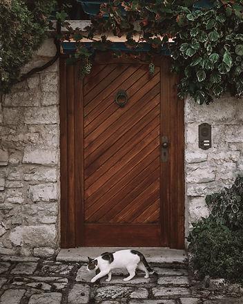 tahta kapı
