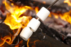 Marshmallows over Campfire