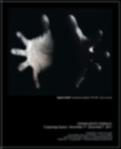 FEEDBACK THOMPSON-LANDRY GALLERY 2011