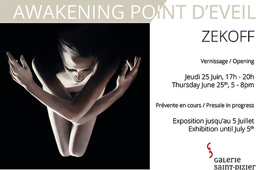 ZEKOFF AWAKENING POINT LEROYER GALLERY 2015