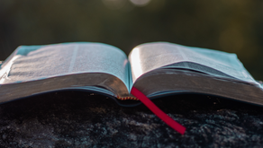 The Joy Of The Word