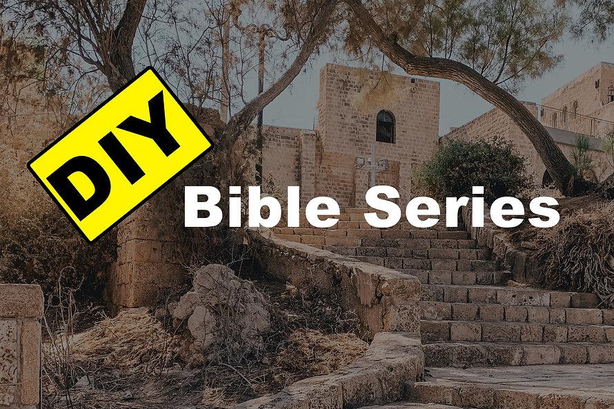 The DIY Bible Series.jpg