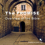 Bible Overview.jpg