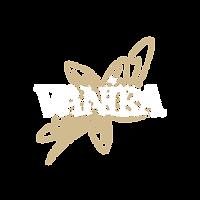 XX_VANIRA_LOGO_Sans fond.png