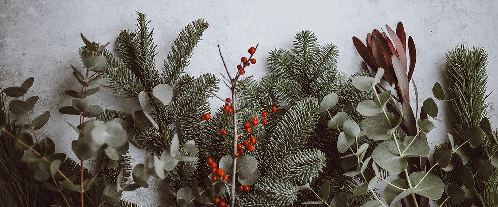 25Days pine banner_edited.jpg