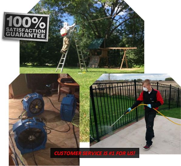 residential pest control green bay wi