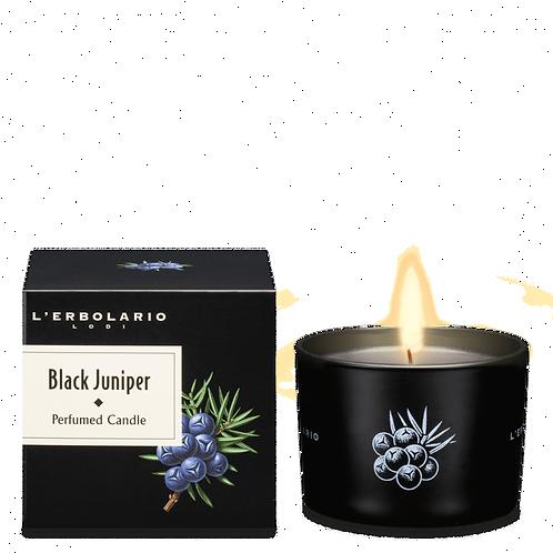 Black Juniper Perfumed Candle