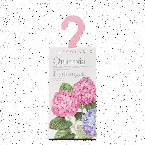 Hydrangea Perfumed Sachet for Wardrobe